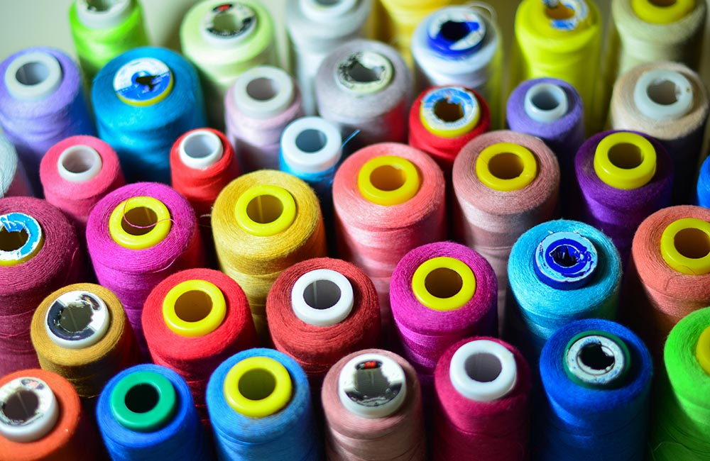 How Customization Is Affecting The Pet Apparel Industry